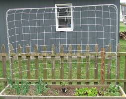 trellis netting easy to build and great for vining plants