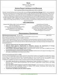 Resume Service Dallas Kays Makehauk Pertaining To Professional