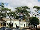 imagem de Planalto Bahia n-15