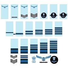 Armed Forces Insignia Chart Air Force Insignia Saudi Arabia Stock Vector Illustration