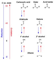 Carbonyl Reduction Wikipedia