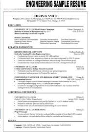 Example Of Best Resume Format Resume For Study