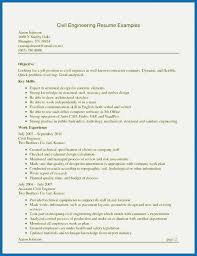 Excel Resume Examples The Death Of Advanced Realty Executives Mi Invoice And