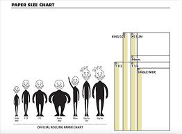 Raw Paper Size Chart Www Bedowntowndaytona Com