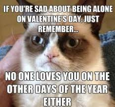 i hate valentine s day meme. Brilliant Hate No One Loves You And I Hate Valentine S Day Meme V