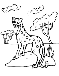 Colours worksheets and online activities. Free Cheetah Coloring Page