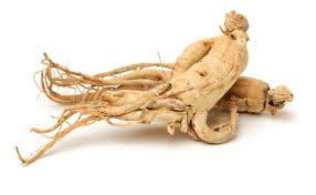 Korean Ginseng Review Update 2019 15 Things You Need To