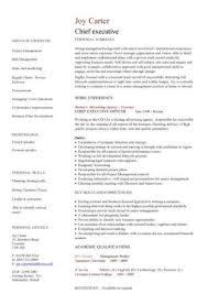 Sample Of Executive Resumes Executive Cv Template Resume Professional Cv Executive Cv
