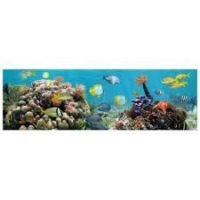 Barrier Reef Coat Rack Coral Reef Wall Art Wayfair 59