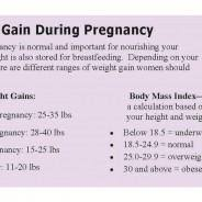 Weight Chart During Pregnancy In Kg Pregnancy Healthy Weight Gain Gaining Weight During
