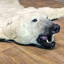 polar bear rug bear rug for polar bear taxidermy rug for the taxidermy polar bear rug
