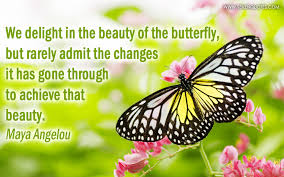 Butterfly Beauty Quotes Best of Quote Of The Day
