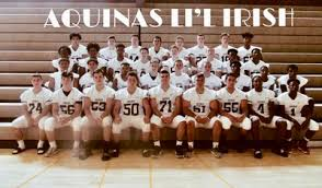 Aquinas - Ny Little rochester Rankings Irish Football Institute 2018 fcffedf|Go Niners ! ! !: Uncommon Unopened 49ers 1977 Action Workforce Mate