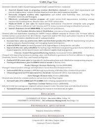 Resume Sample 16 Senior Sales Executive Resume Career