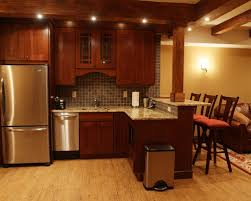 Basement Kitchen Designs Unbelievable Bar 7