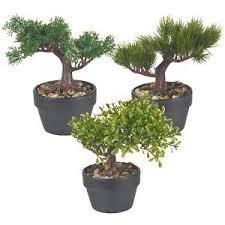 office bonsai. Interesting Office Image Is Loading ArtificialOfficeDeskGreenBonsaiTreeBlackPlant To Office Bonsai