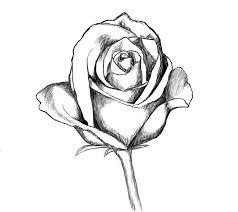Easy To Draw Roses Roses Drawn Rome Fontanacountryinn Com