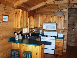 image of log cabin kitchens design