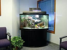 office fish tank fish aquarium gallery of aquatic designs aquarium  maintenance gra forks cool desk fish