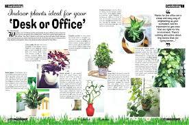indoor office plants no light ergonomic best small indoor office plants easy to grow houseplants awesome indoor office plants no light