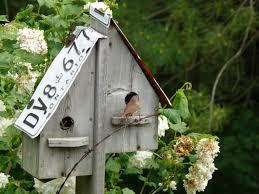 Rustic Birdhouses Birdhouses For Sale Cynthia Reyes Author