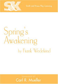 great awakening essay the enlightenment and the great awakening essay