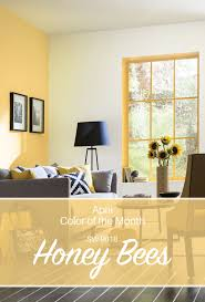 basement paint ideas. Sherwin Williams April Color Of The Month Honey Bees Sw 9018 From Choice Basement Paint Ideas