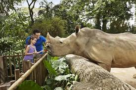 zoo. Exellent Zoo Throughout Zoo E