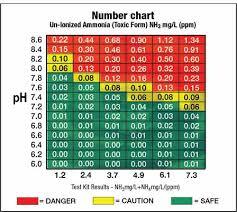 Unionized Ammonia Chart Seachem Alert Combo Cleaning And Maintenance 342960