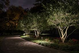 lighting small trees sidera landscape