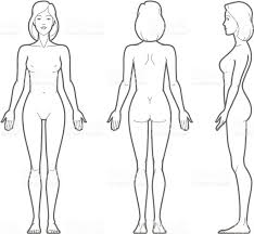 female body outline template photos images of female body outline drawings art gallery