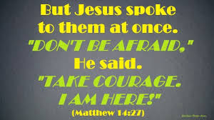 Daily Bible Quotes Amazing DAILY BIBLE QUOTES