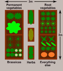 Small Picture Raised Bed Vegetable Gardens Plan for a 3x3m 10x10ft Plot