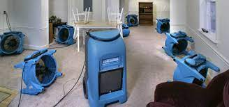 wet carpet cleaning and drying service