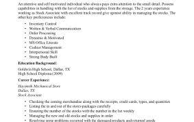 High School Resume Sample Flight Mechanic Sample Resume