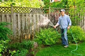 diy lawn care tips northside tool al