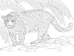 You can download or print a lot of coloring pages with modern transport in this section. Jaguar Coloring Pages One Downloadable Educative Printable