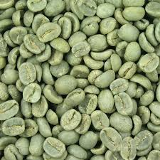 Wholesale coffee, roasted to order. Burundi Unroasted Green Coffee Beans Fair Trade Grand Parade Coffee Grand Parade Coffee