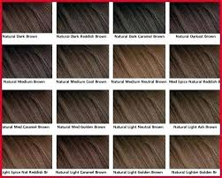 Loreal Ash Color Chart Blonde Hair Color Chart Silkscreening Me