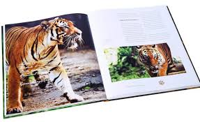 how do you brew up a good coffee table book we ask the experts