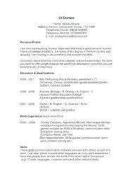 Professional Profile In Resumes Professional Profile Resume Examples New Resume Profile How To Write