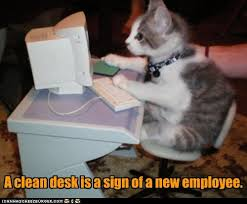 on the internet nobody knows you re a cat. Beautiful The In On The Internet Nobody Knows You Re A Cat H