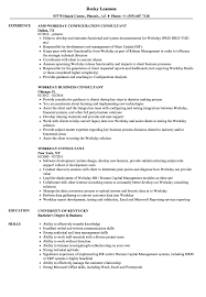 Download Workday Consultant Resume Sample as Image file