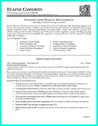Construction Project Manager Resume Template Mesmerizing Thesis Statements Writing A Paper Academic Guides At Walden