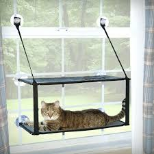 cat window sill kitty sill double stack window mount heated cat window sill perch cat window cat window sill