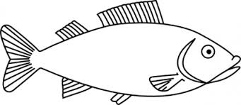 Simple Fish Outline Bass Fish Outline Clip Art Clipart Library Free Clipart Images