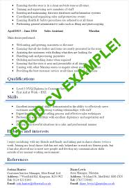 example of a perfect resumes good cv examples templates for 100 jobs cv plaza