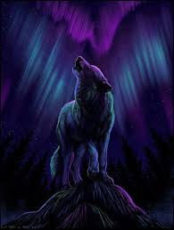 wolf howling drawing anime.  Drawing Night Of The Wolf Wolf Howling DrawingAnime  And Drawing Anime H