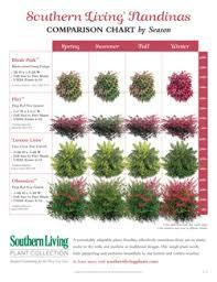 Plant Comparison Chart Plant Comparison Charts Southern Living Plants