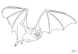 Common Vampire Bat coloring page | Free Printable Coloring Pages